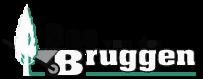 Bas van der Bruggen
